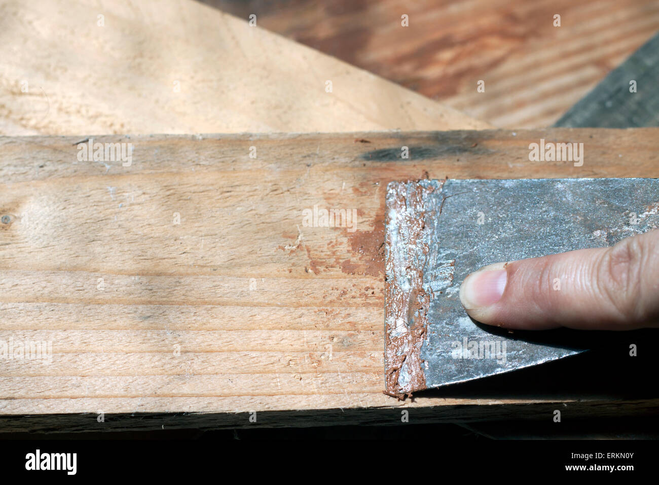 a woman using a putty knife so as to refurbish some pieces of wood - Stock Image