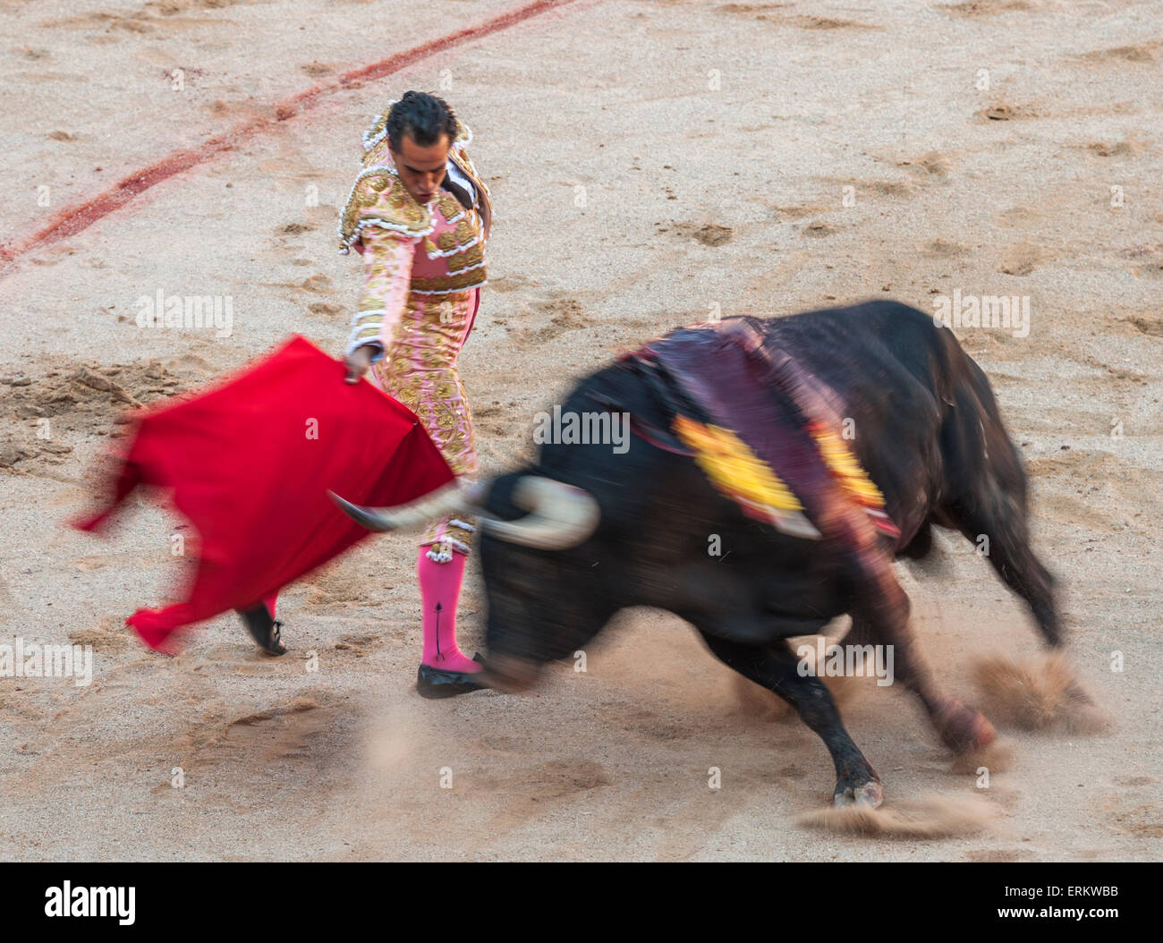 Bullfights, Festival of San Fermin, Pamplona, Navarra, Spain, Europe Stock Photo