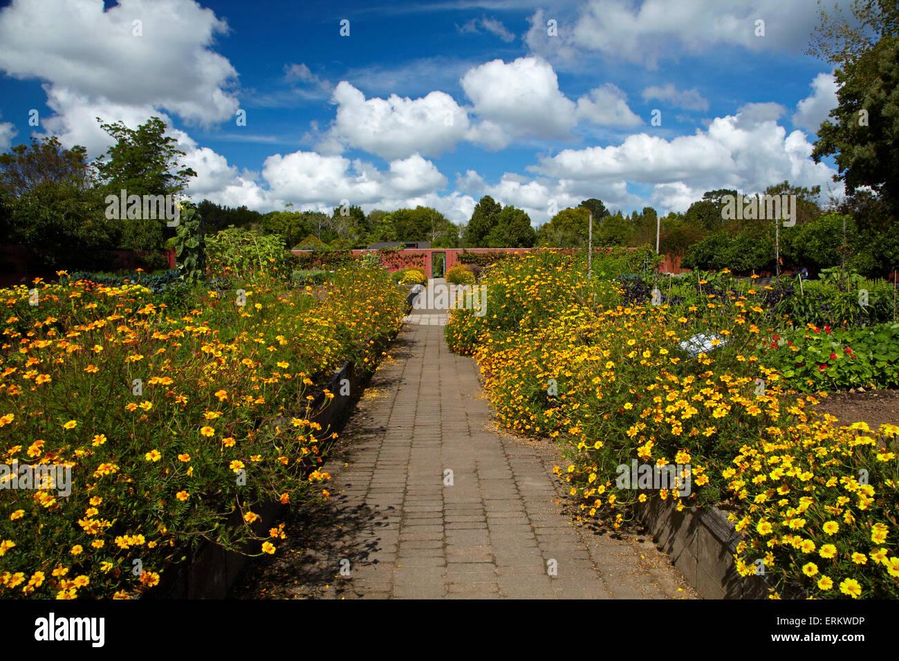 Kitchen Garden, Hamilton Gardens, Waikato, North Island, New Zealand - Stock Image