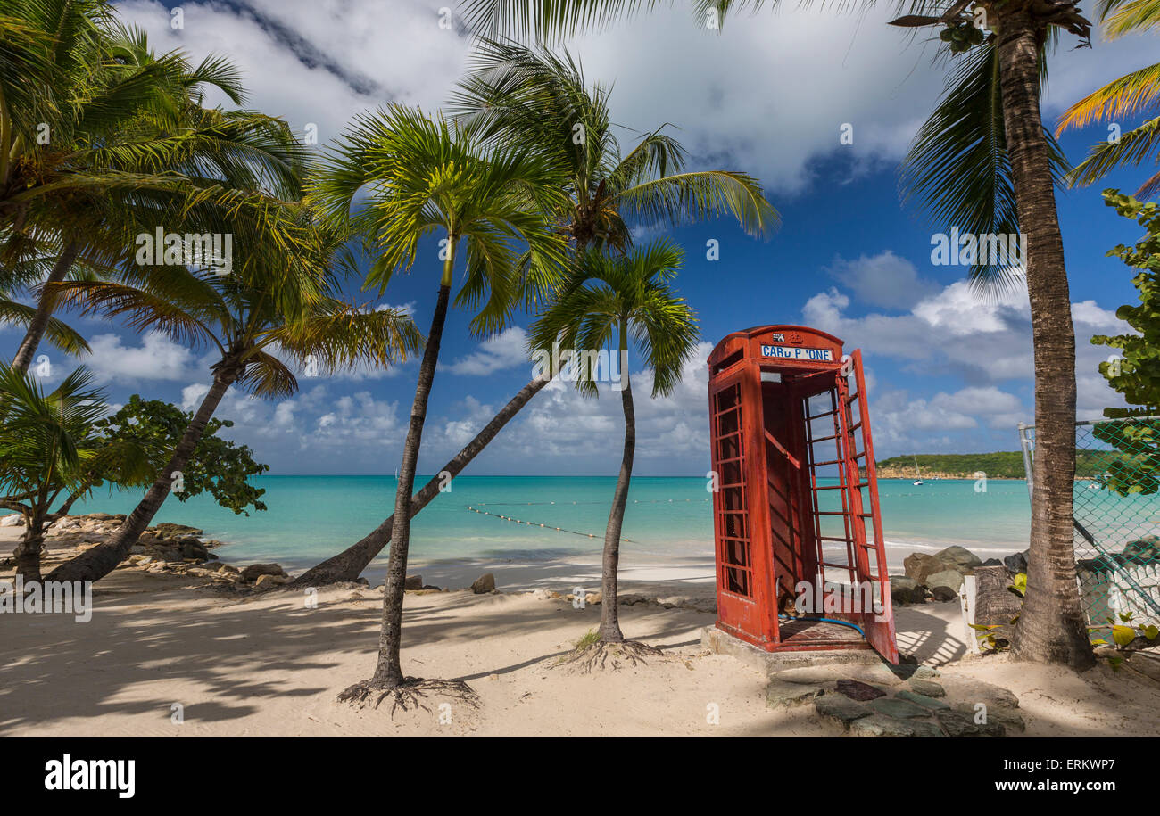 A red telephone box under coconut trees that surround Dickenson Bay, a strip of sand overlooking the Caribbean Sea, - Stock Image
