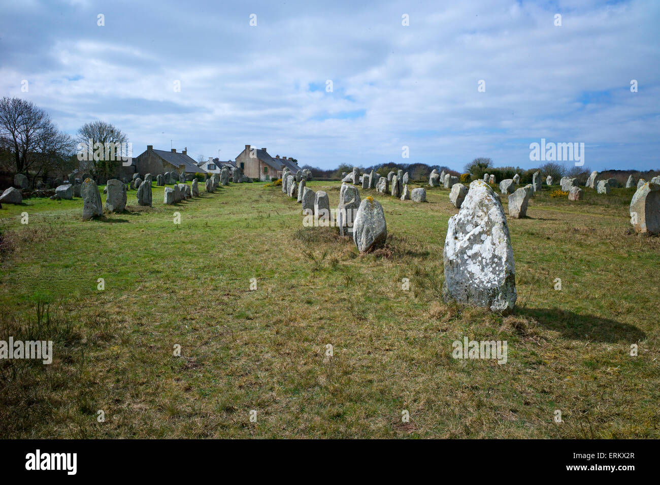 Megalithic stones in the Menec Alignment at Carnac, Brittany, France, Europe Stock Photo