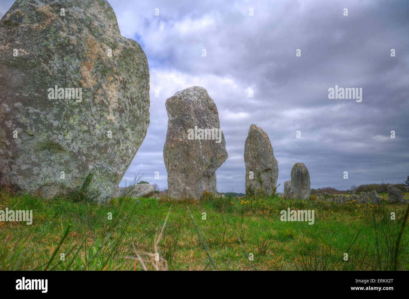 Megalithic stones in the Menec Alignment at Carnac, Brittany, France, Europe - Stock Image