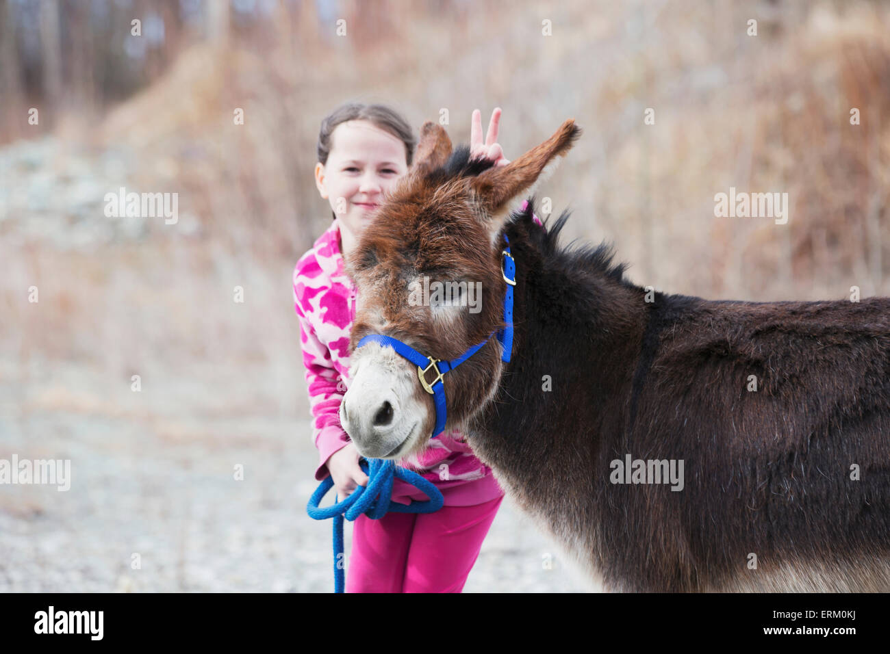 Young girl walking a pet donkey near Palmer in Southcentral Alaska, Spring Stock Photo