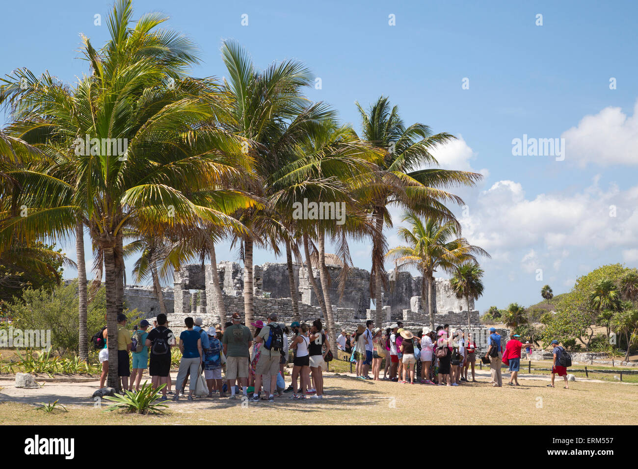 Tourists standing in the shade of palm trees on a hot day during guided tours in the walled Mayan city of Tulum, Stock Photo