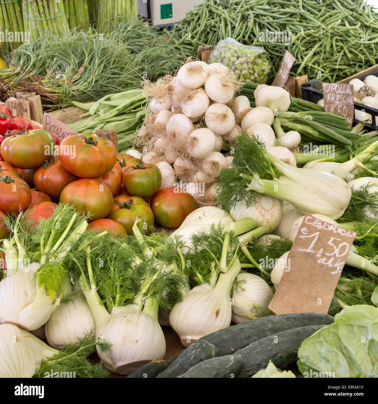 Display with fresh tomatoes, onions, cucumbers, beans, tarragon and fennel Stock Photo