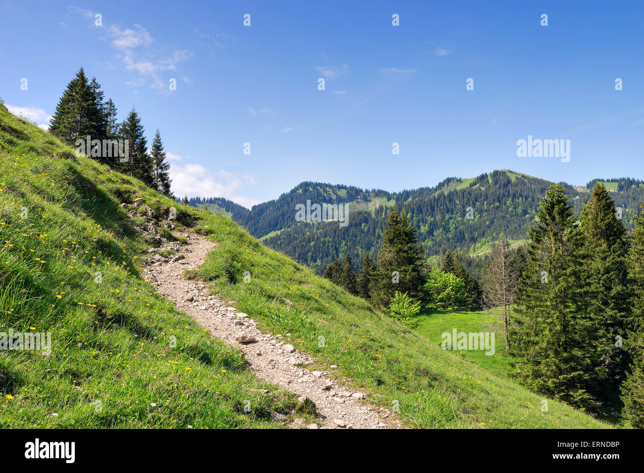 Ascent to Mount Jaegerkamp in the Alps in Bavaria in Germany - Stock Image