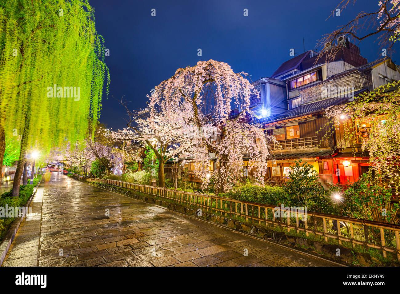 Kyoto, Japan at the historic Shirakawa District during the spring season. - Stock Image