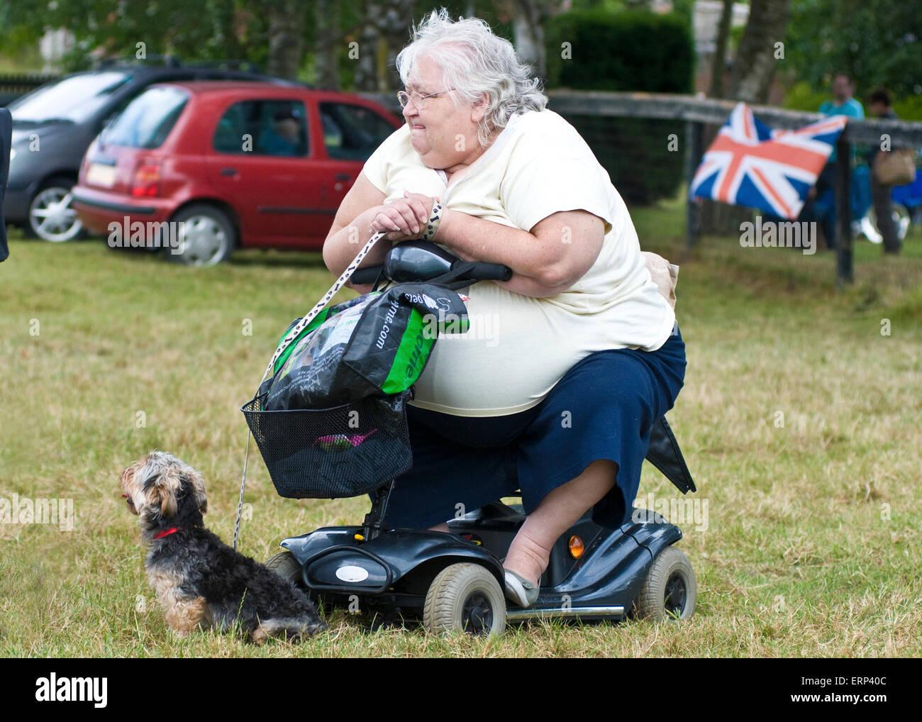 Walking Dog In Wheelchair
