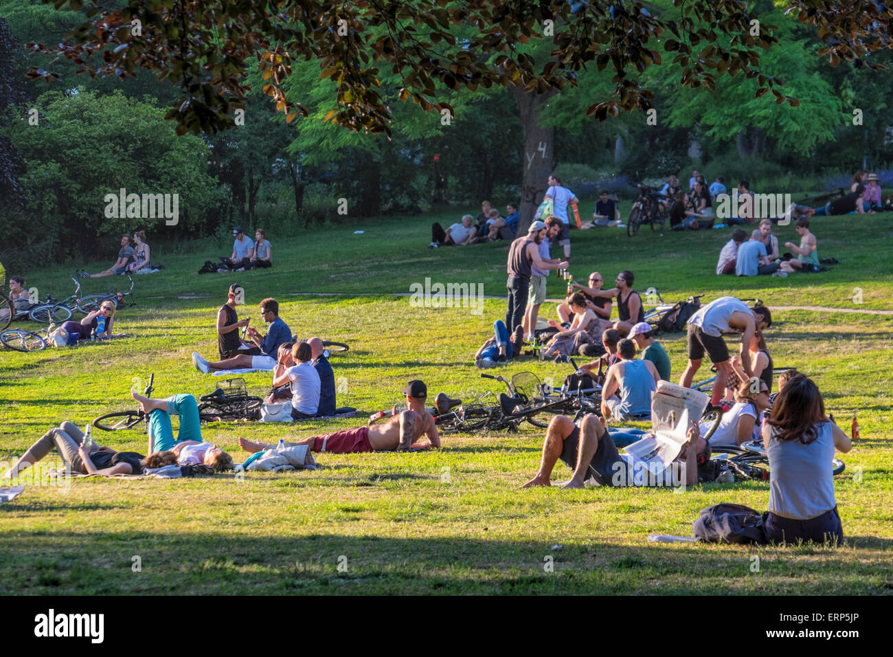 Berlin, Germany. 05th June, 2015. Berliners relax in the park as warm weather  arrives in the capital city. Summer - Stock Image