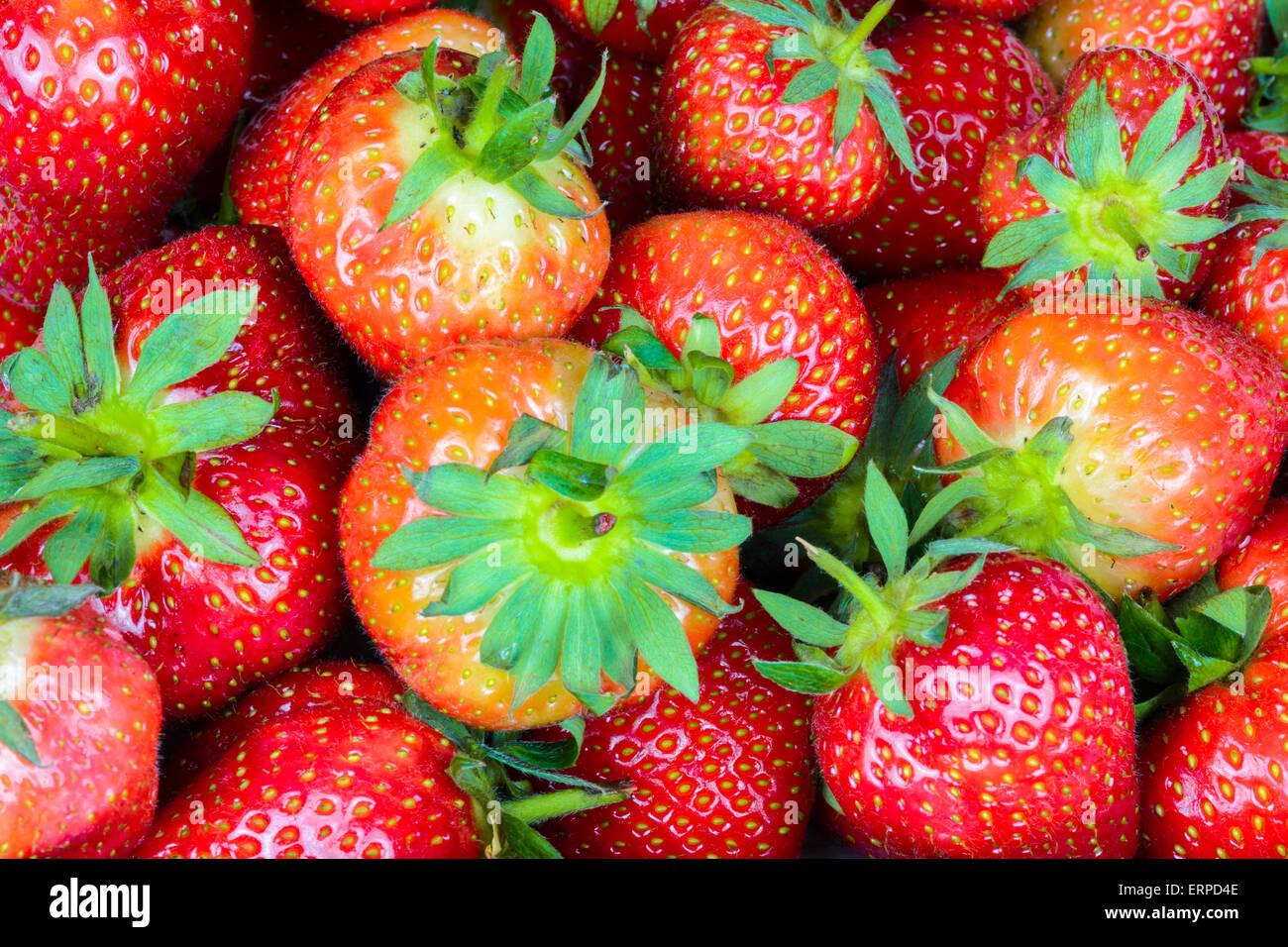 Mixed sizes of ripe English strawberries. - Stock Image