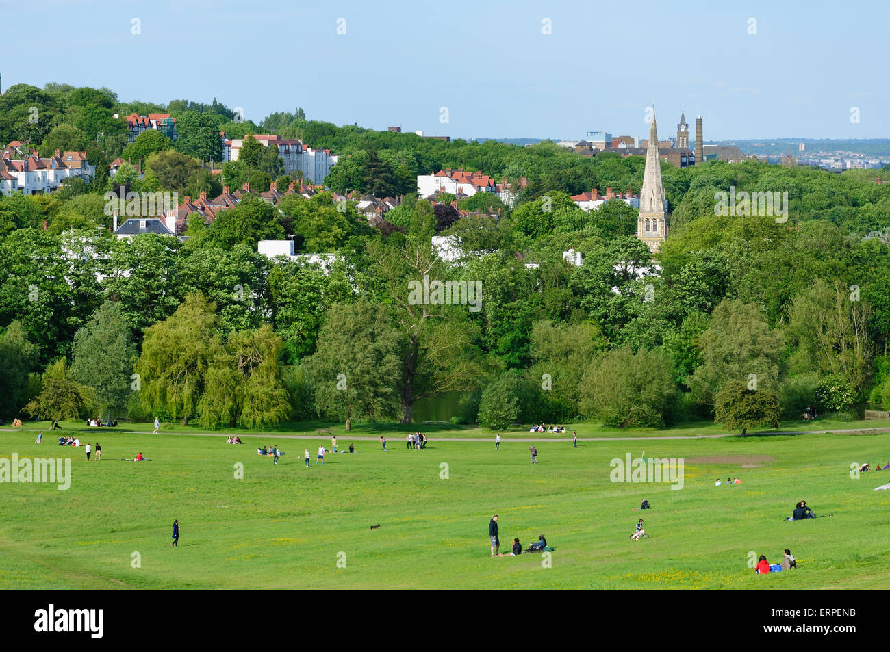 Hampstead Heath, North London, UK in summer, looking towards Highgate - Stock Image
