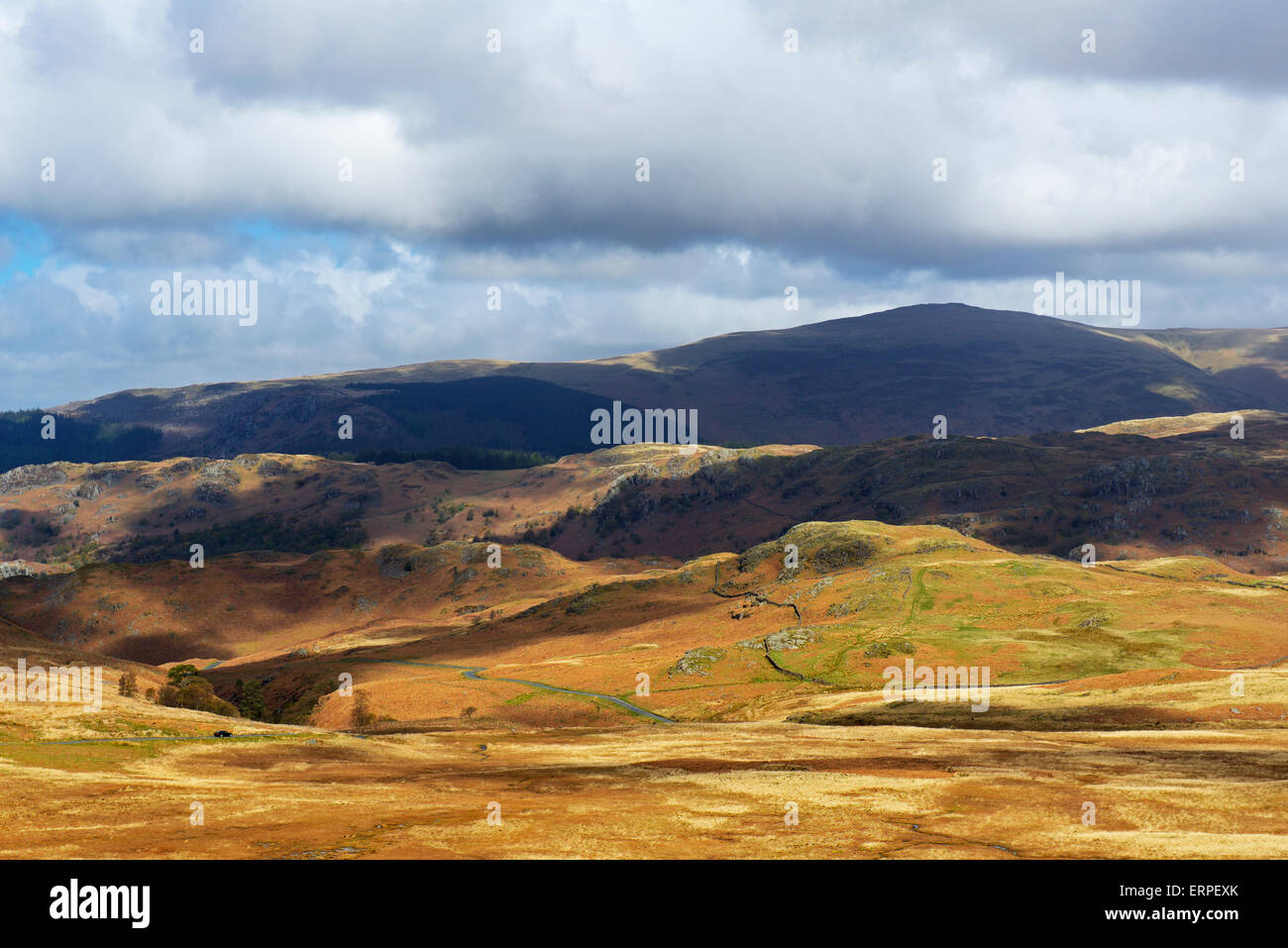 Birker Fell, Lake District National Park, Cumbria, England UK - Stock Image