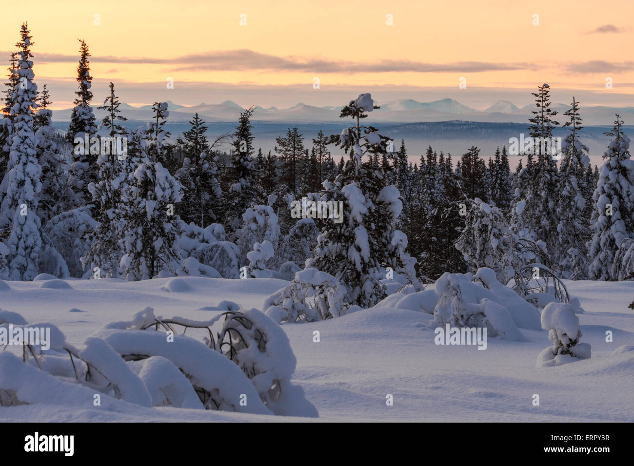 Sunset over winter landscape with The mountains of Sarek national park in the background - Stock Image