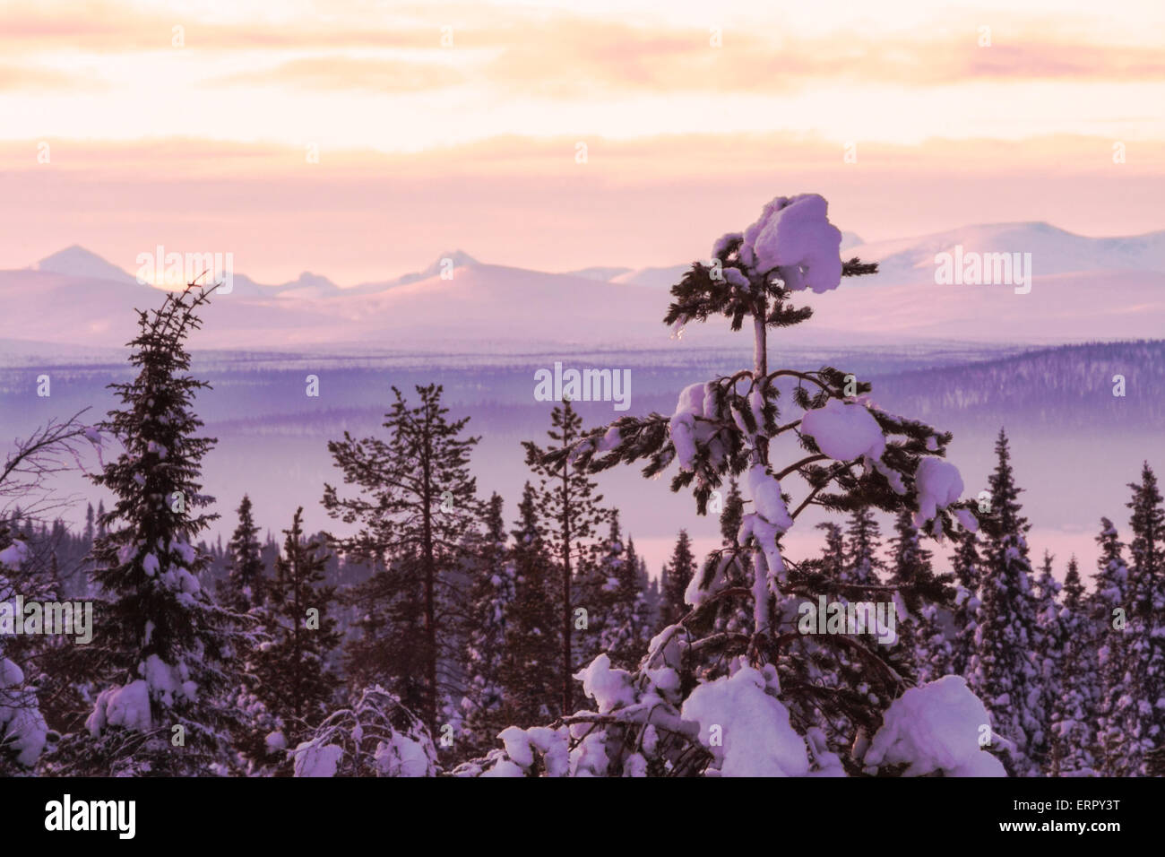 Winter landscape with the mountains of sarek national park in background, Gällivare, Swedish lapland - Stock Image