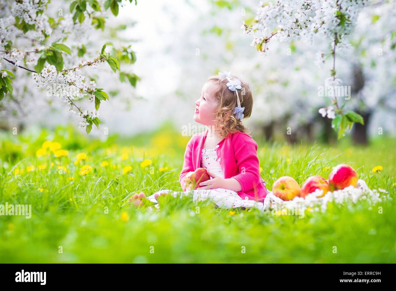 Adorable happy toddler girl with curly hair and flower crown wearing a red dress enjoying picnic in a blooming fruit - Stock Image