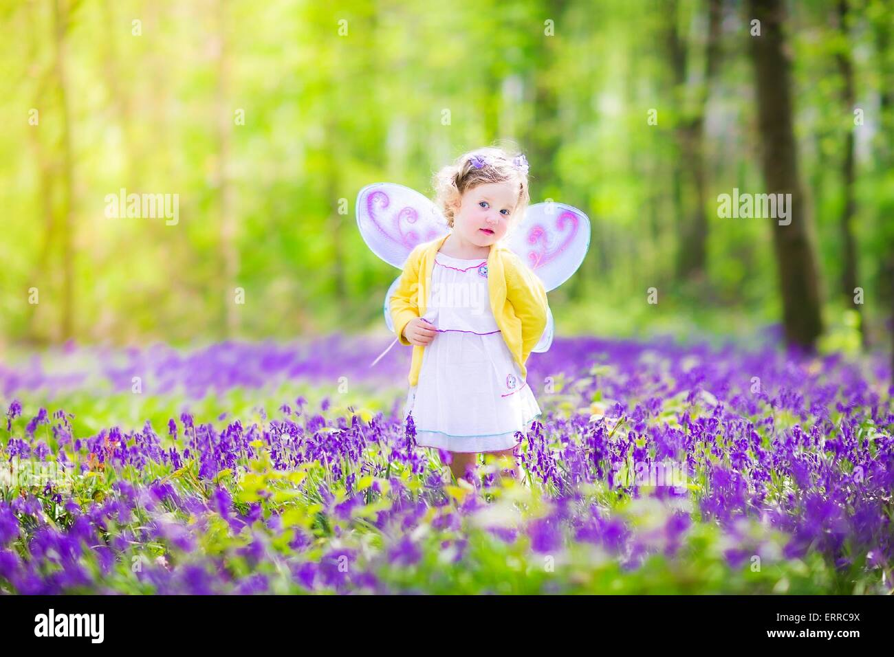 Adorable toddler girl wearing fairy costume with purple wings and adorable toddler girl wearing fairy costume with purple wings and yellow dress is playing in spring forest with bluebell flowers mightylinksfo