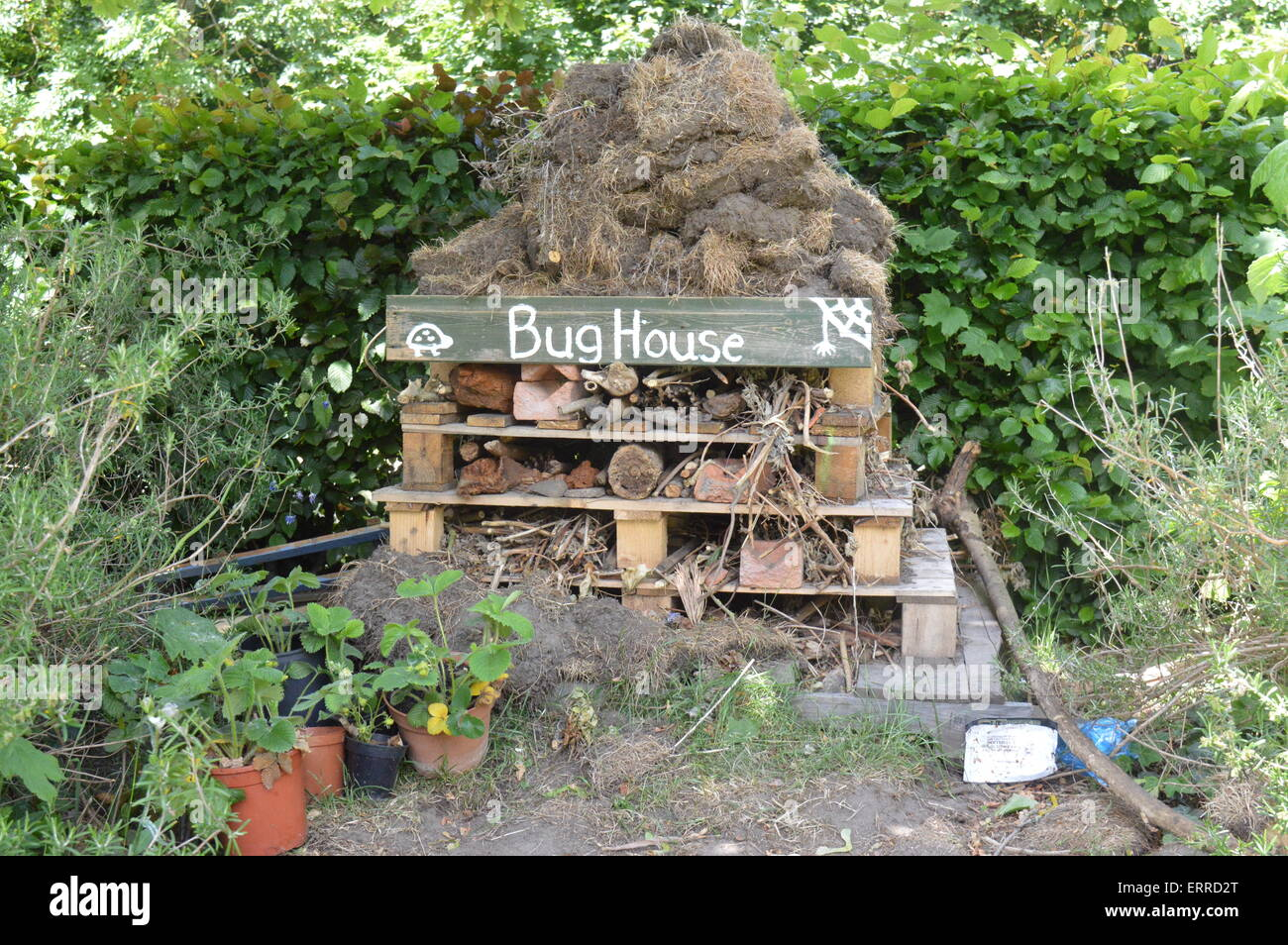 Bug house built out of recycled pallets, wood, twigs and sods of earth. Vivienne Johnson/Alamy Live News - Stock Image
