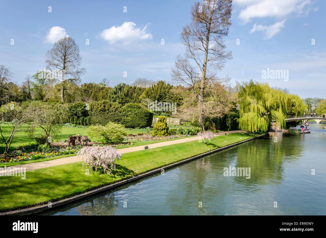 Fellows' Garden Clare College and the River Cam, Cambridge University - Stock Image