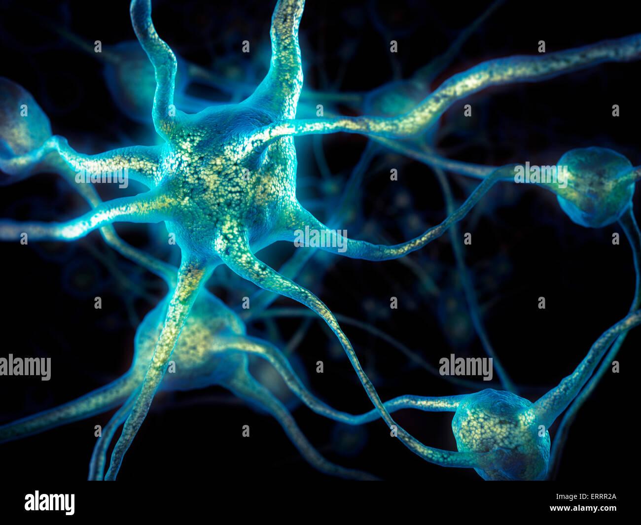 Network of neurons, Brain cells, nervous system, conceptual 3D illustration - Stock Image
