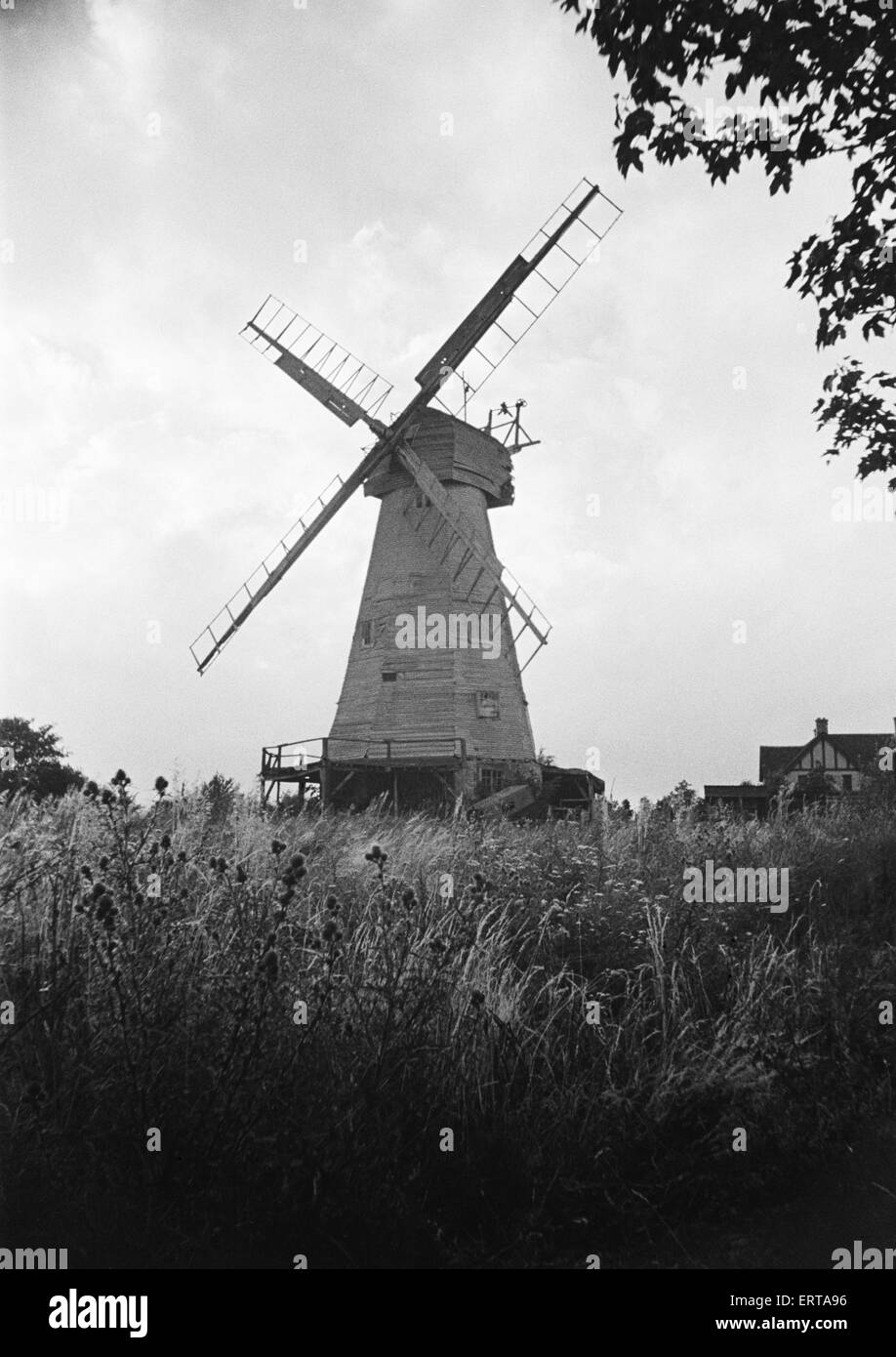 White Mill in Headcorn, Kent.  The mill was Demolished in 1952.  August 1946. - Stock Image