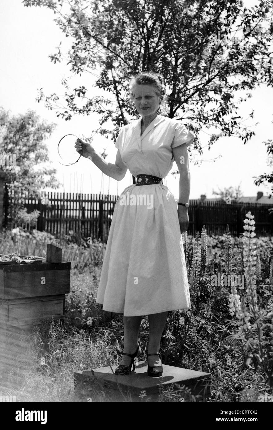 Ethel Granger shows off her 14 inch waist, the smallest in the world, in her hometown of Peterborough. 14th June - Stock Image