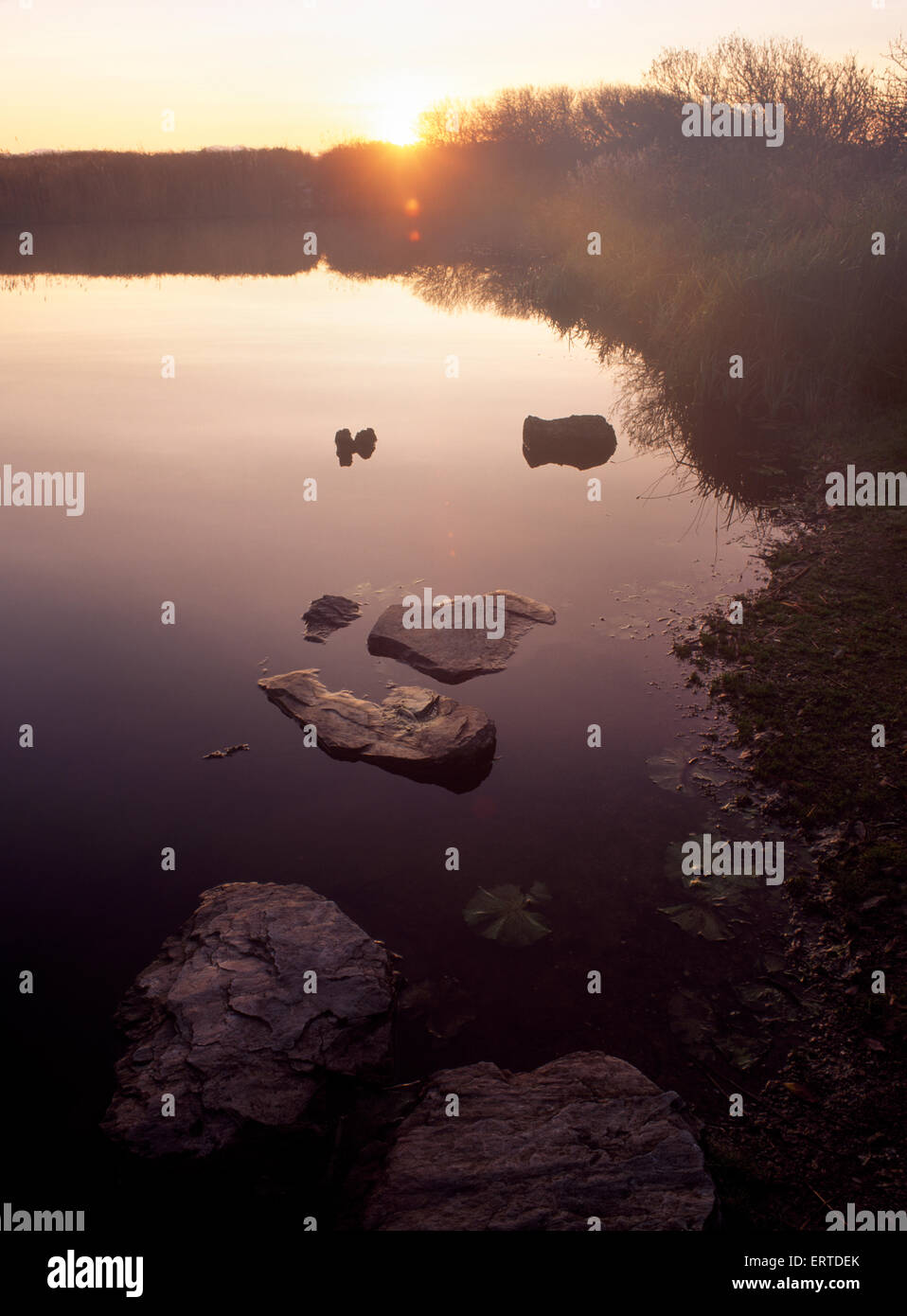 Sunrise over site of Llyn Cerrig Bach (E) sacred lake, RAF Valley, Anglesey, where votive offerings of Celtic metalwork - Stock Image