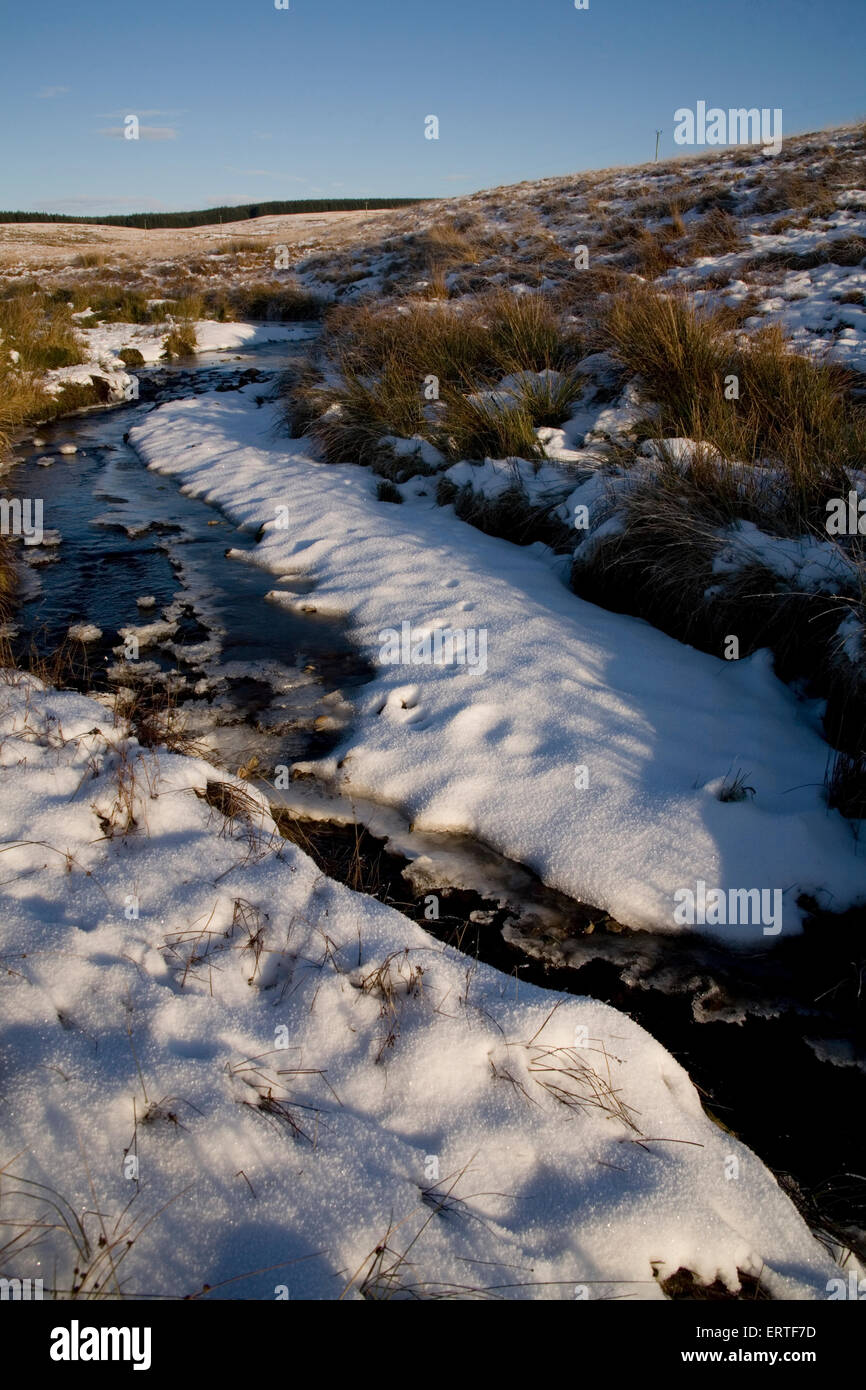 Frozen stream, Glenwhilly, Dumfries and Galloway, Scotland - Stock Image