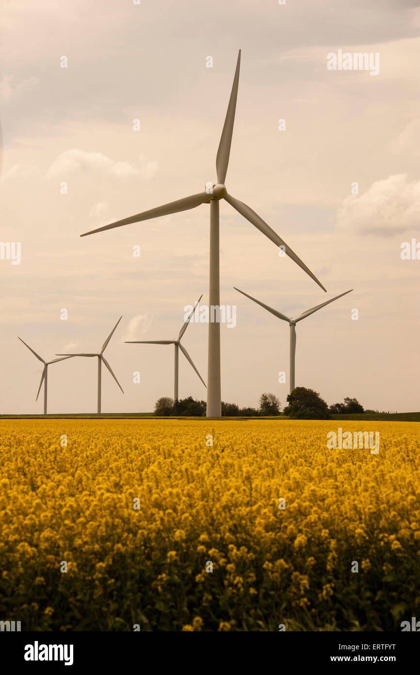 Windrad, Windmill, wheel - Stock Image