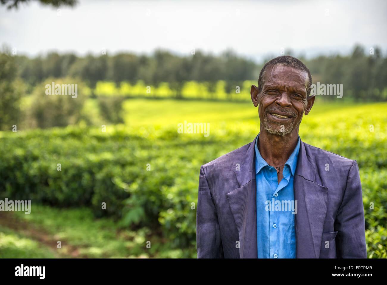 Ethiopian farmer on a tea plantation near Jimma, Ethiopia - Stock Image