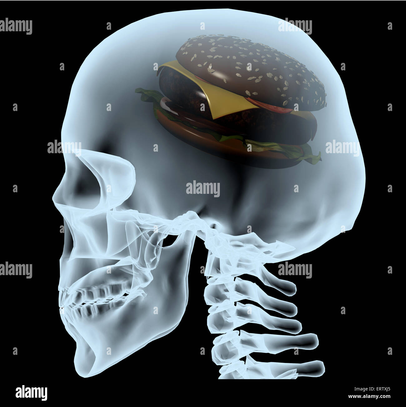 X-ray of a head with the burger instead of the brain, 3d illustration - Stock Image
