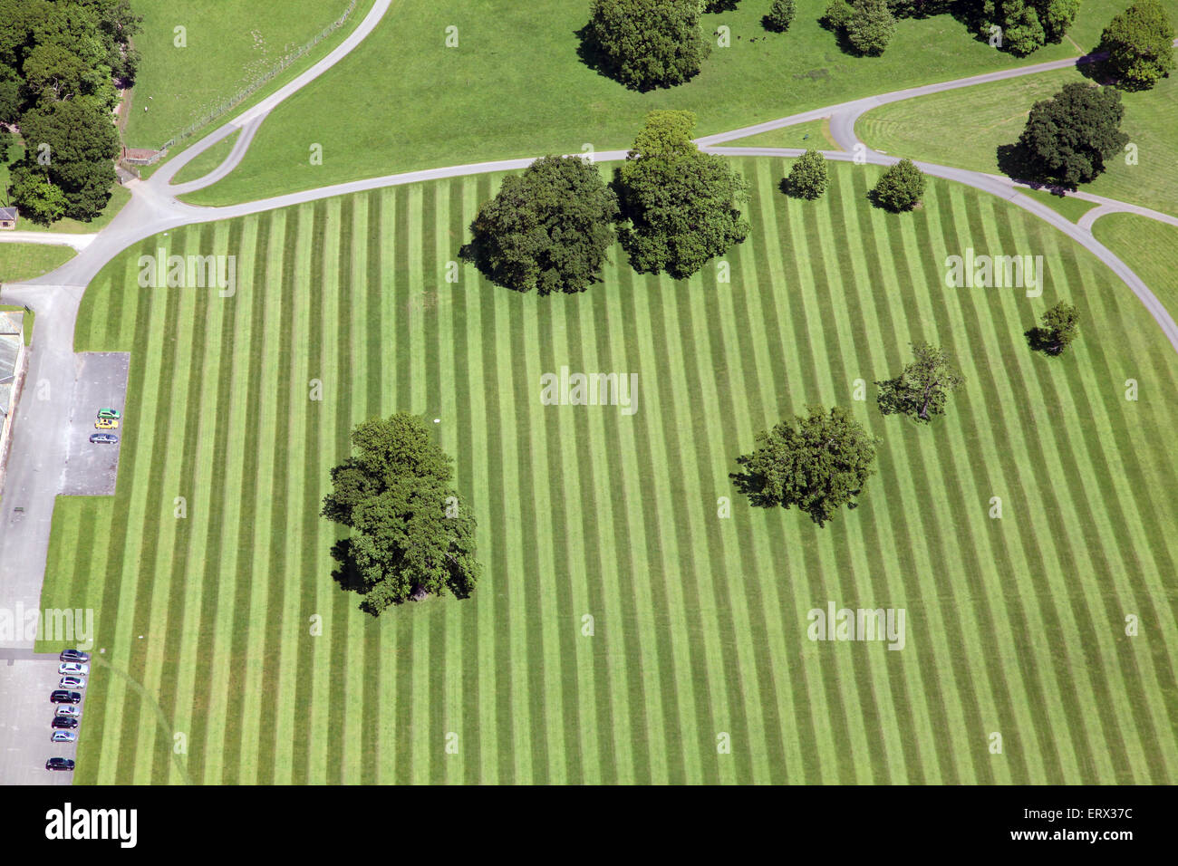 aerial view of a striped lawn, stripey grass pattern with trees, UK - Stock Image