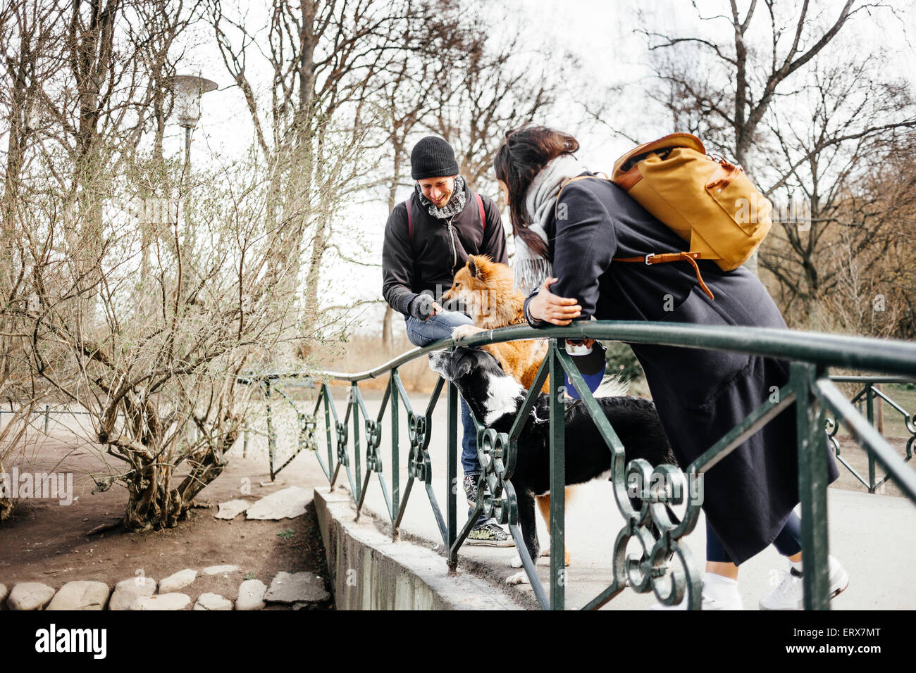 Couple with dogs standing on bridge at park - Stock Image
