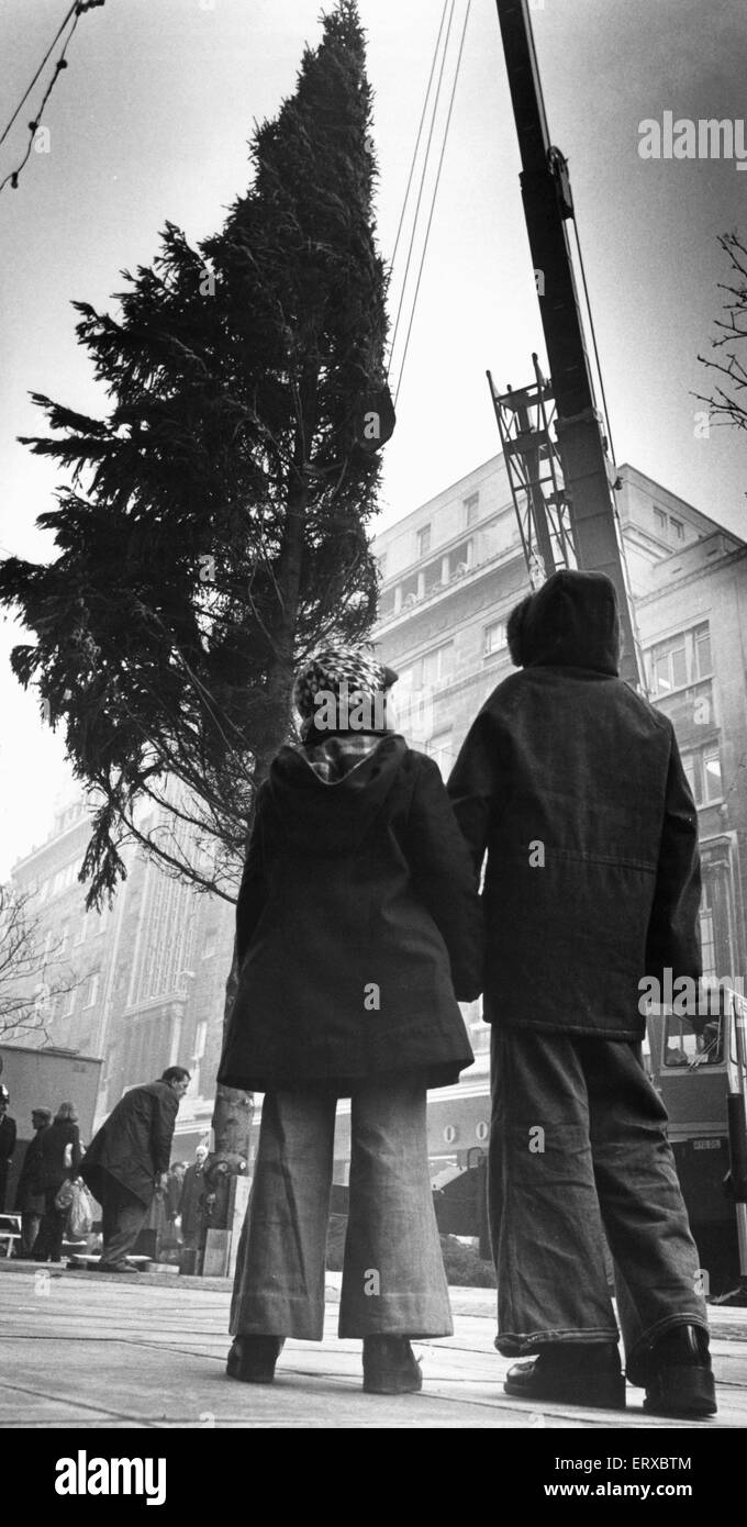 Two youngsters gaze upwards to the top of the Christmas tree as workmen place it in Church Street, Liverpool. 3rd - Stock Image