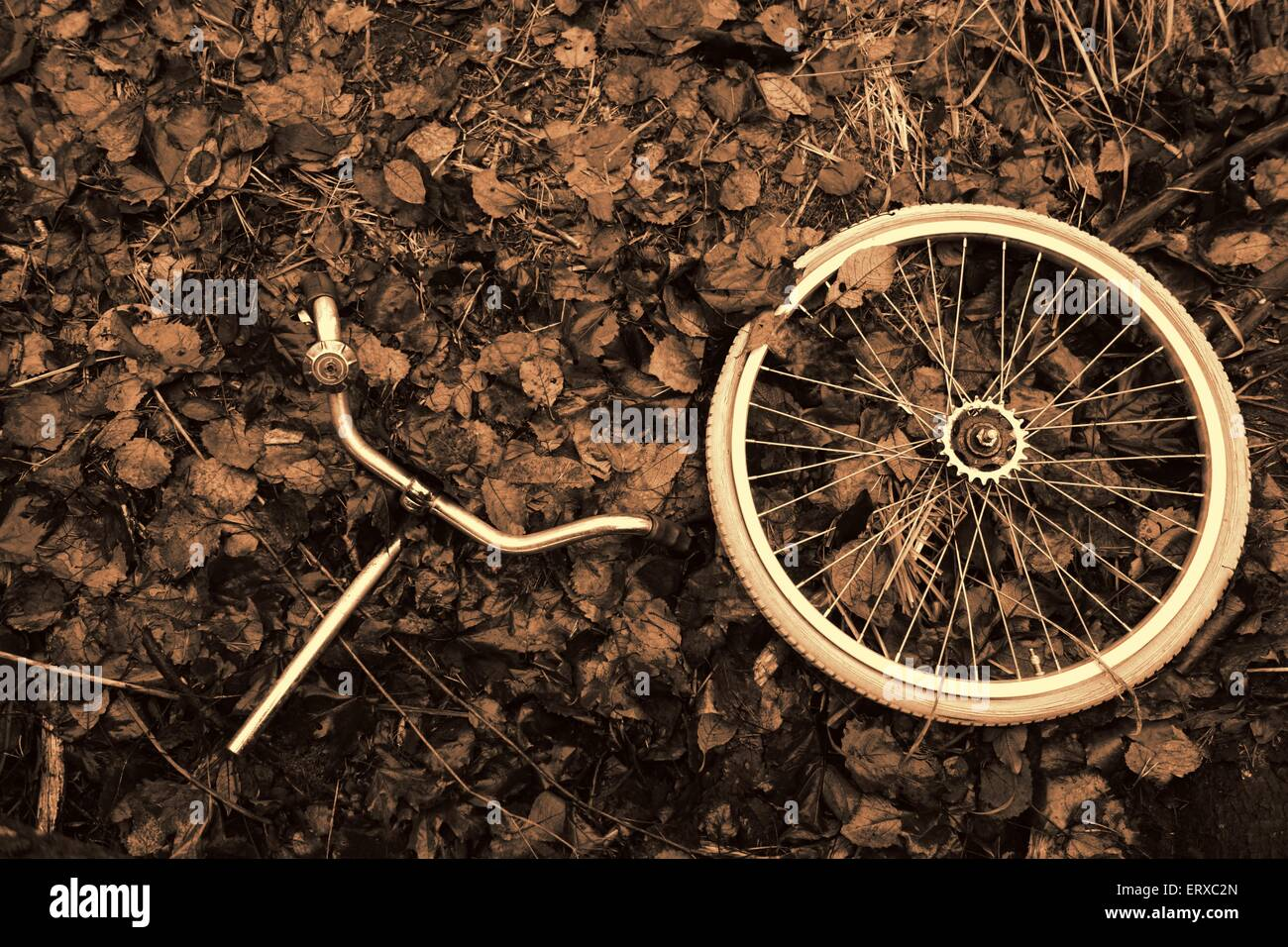 Bicycle wheel and handlebars in Autumn leaves - Stock Image