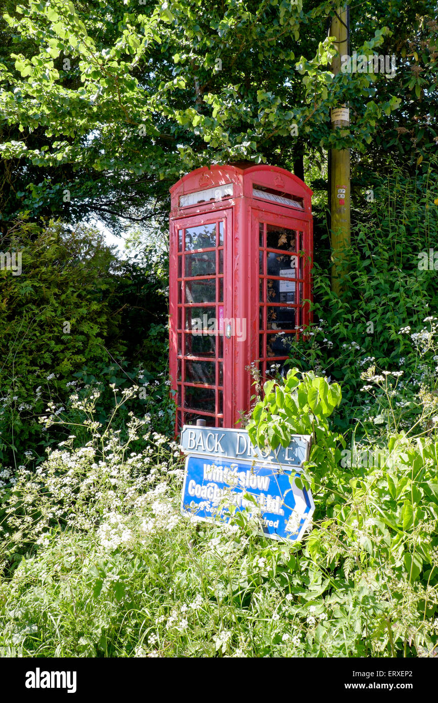 Overgrown and neglected red K6 public telephone kiosk in rural  location UK - Stock Image