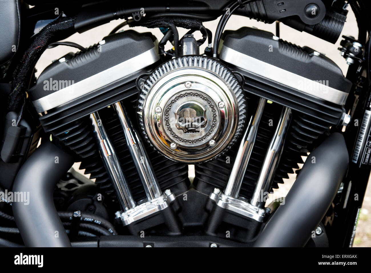 Harley Davidson Iron 883 motorcycle v twin engine Stock Photo ...