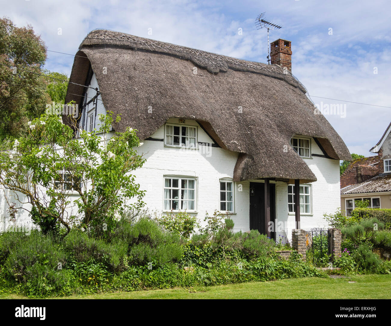 Thatched Cottage in the village of Martin, Hampshire, England, UK Stock Photo