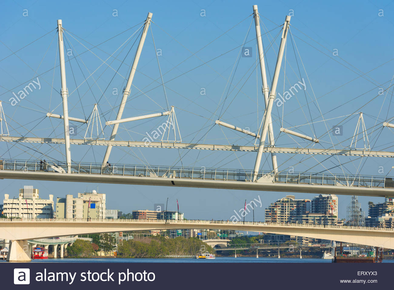 Modern Kurilpa bridge, footbridge crossing the Brisbane River, Brisbane, Queensland Australia - Stock Image