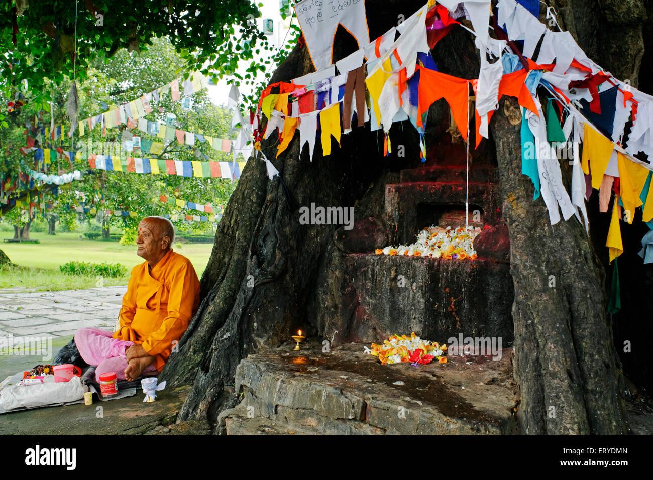 Holy man sitting ; UNESCO World Heritage site ; Gautam Buddha's birthplace at Lumbini ; Nepal - Stock Image