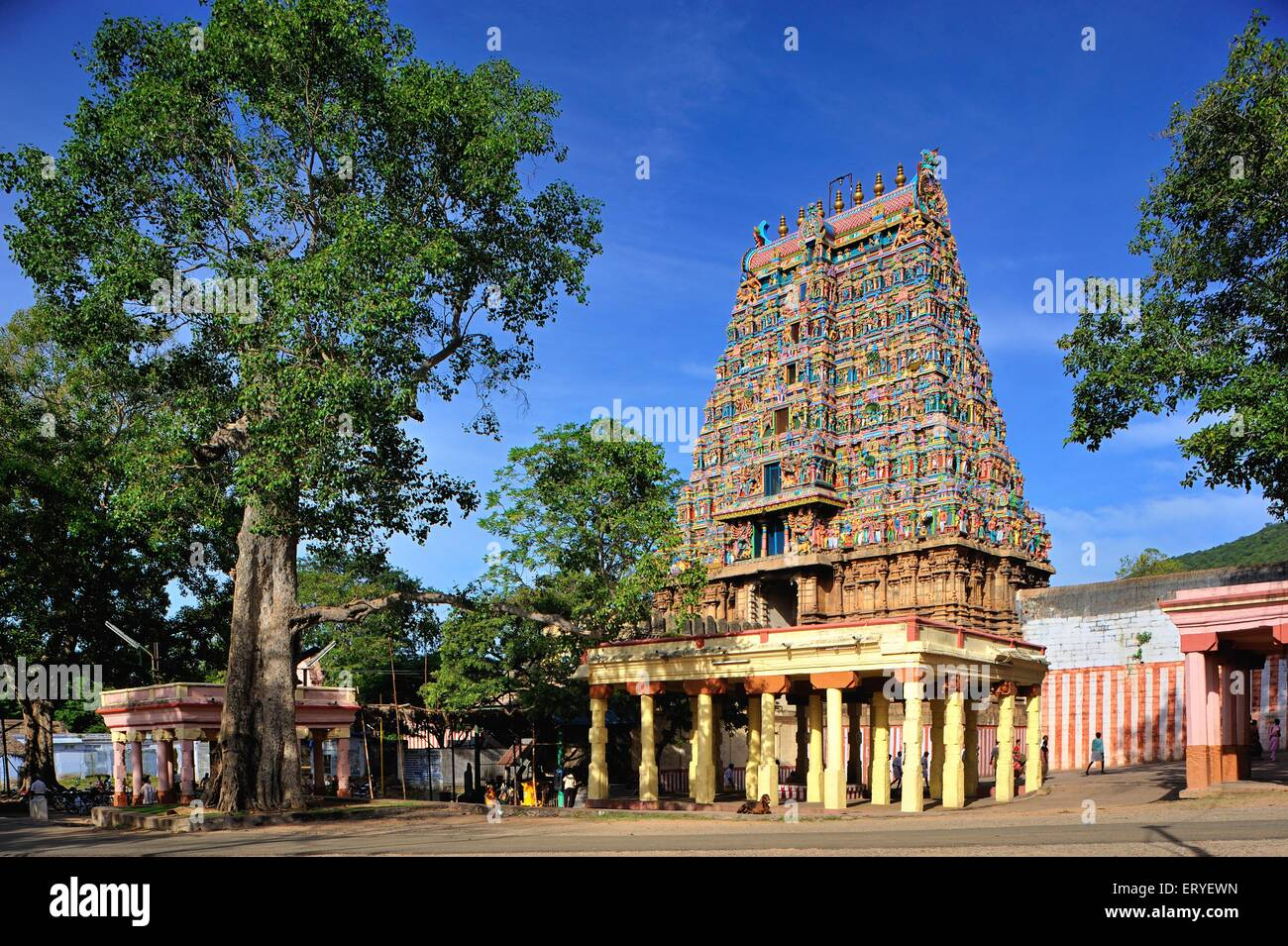 Madurai Temple Stock Photos & Madurai Temple Stock Images
