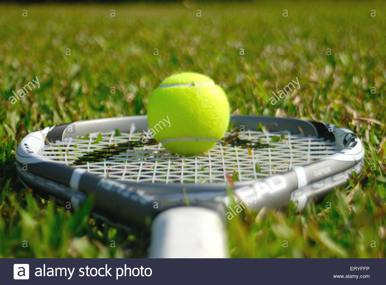 Ball kept on tennis racquet lying on lush green grass 2009 - Stock Image