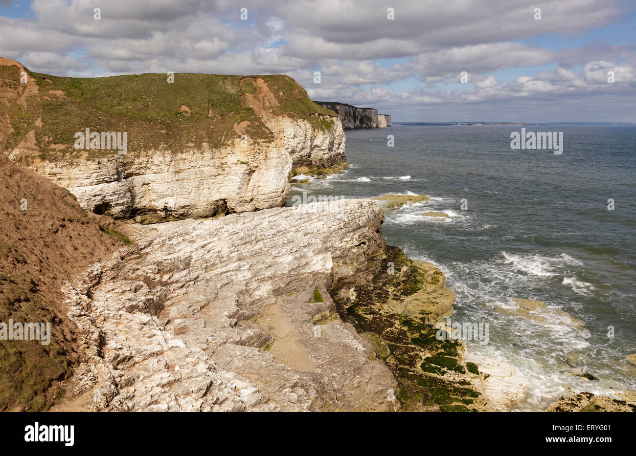Coastline viewed from Thornwick Bay, Flamborough, Bridlington, Yorkshire, England Stock Photo