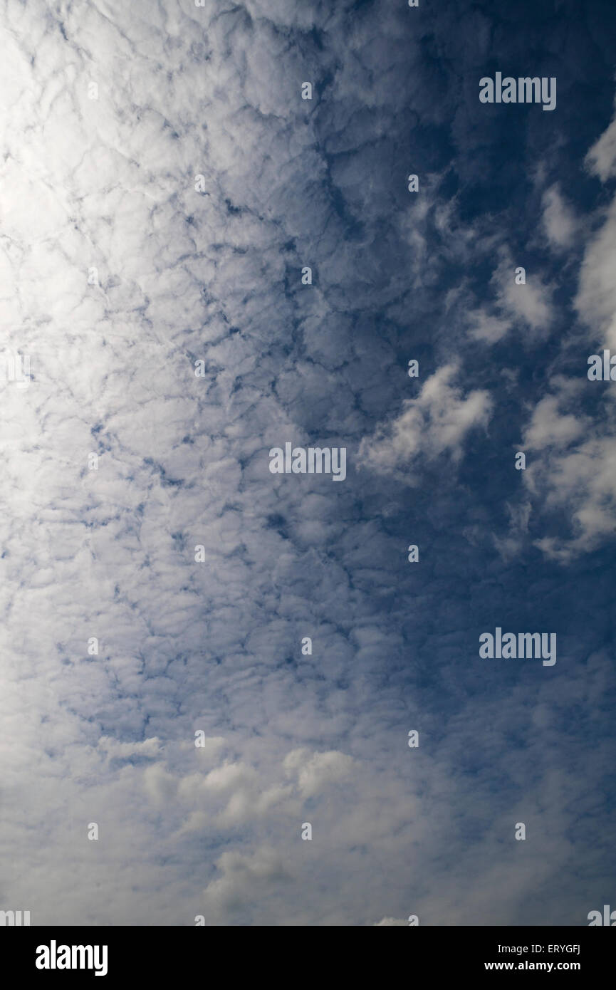 Large fluffy clouds (Altocumulus) - Stock Image