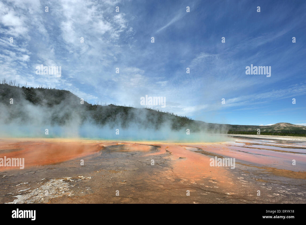 Grand prismatic hot spring in Yellowstone national park ; Wyoming ; USA United States of America - Stock Image