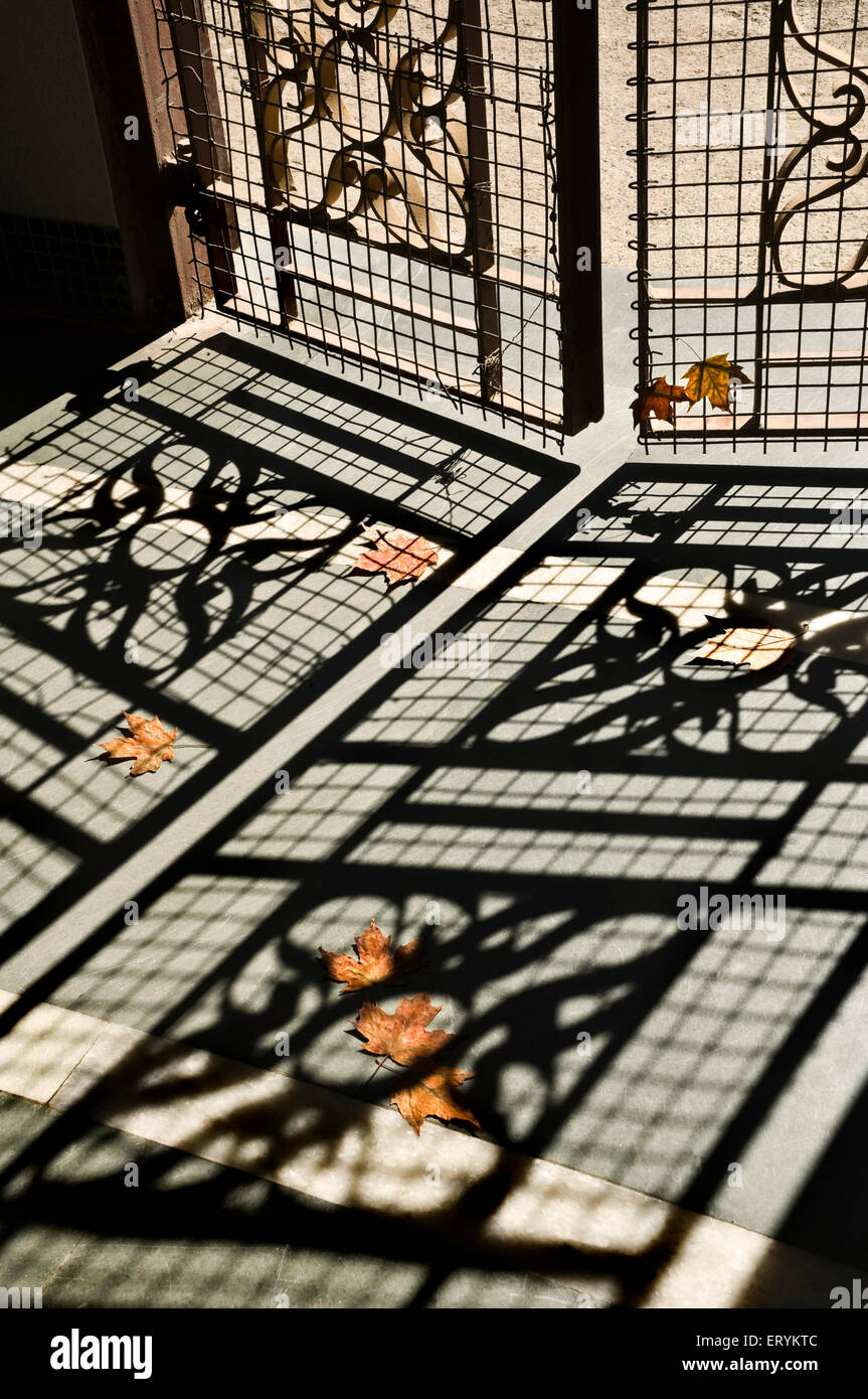 Eight dry maple leaves withered and lying on floor in shadow pattern of gate grill - Stock Image