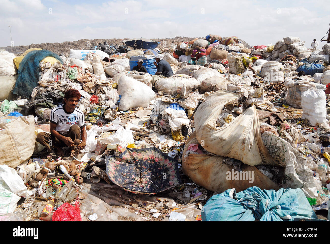 Rag picker collecting garbage in dumping ground ; Deonar ; Bombay Mumbai ; Maharashtra ; India - Stock Image