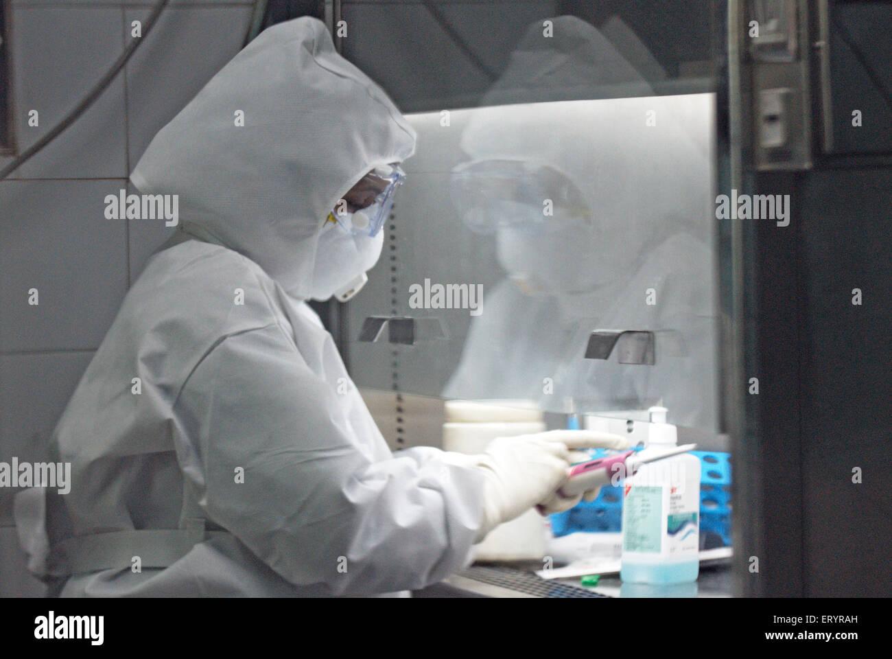 Scientist testing swine flu samples at haffkine institute ; Bombay Mumbai ; Maharashtra ; India 10 August 2009 - Stock Image