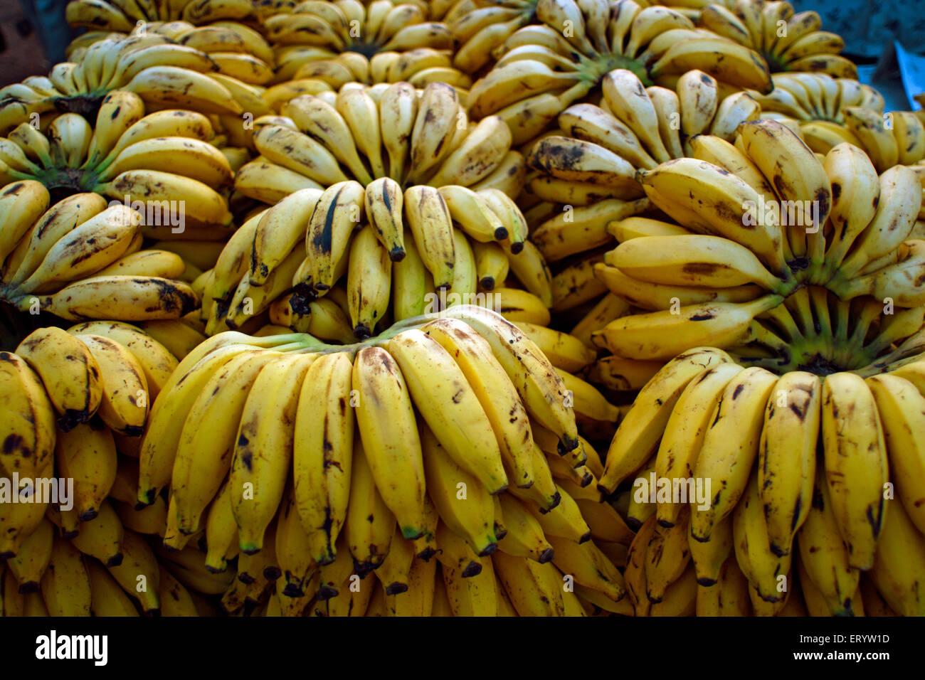 Bananas Genus Musa kept for sale Margaon  ;  Goa  ;  India - Stock Image