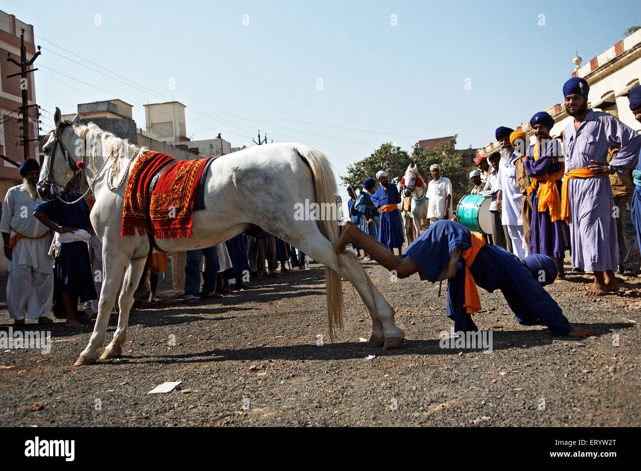 Nihang or Sikh warrior showing stunts Nanded  ;  Maharashtra  ; India NOMR Stock Photo