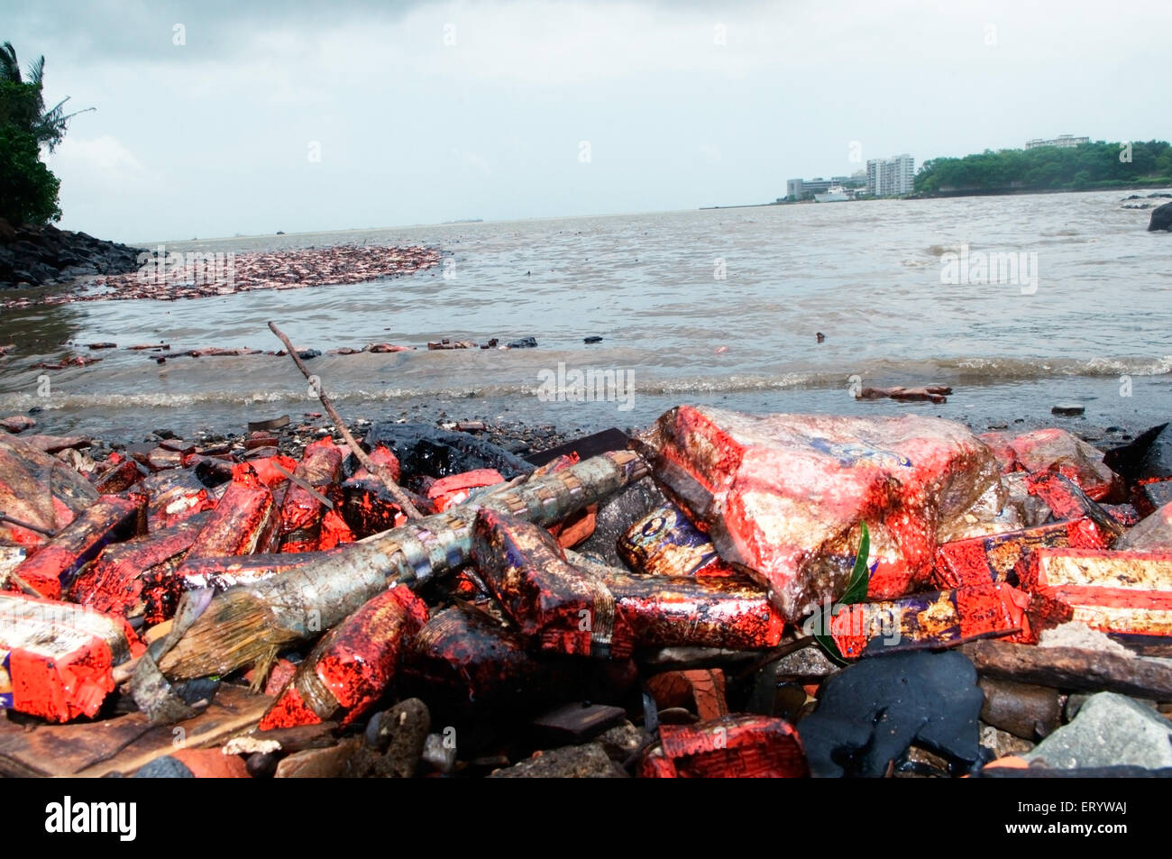 Oil soaked biscuit packets floating due to container ship chitra colliding in sea Bombay Mumbai ; Maharashtra - Stock Image